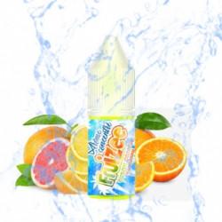 FRUIZEE - Concentré Citron...